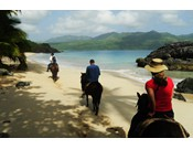 Horseback Riding on untamed beaches